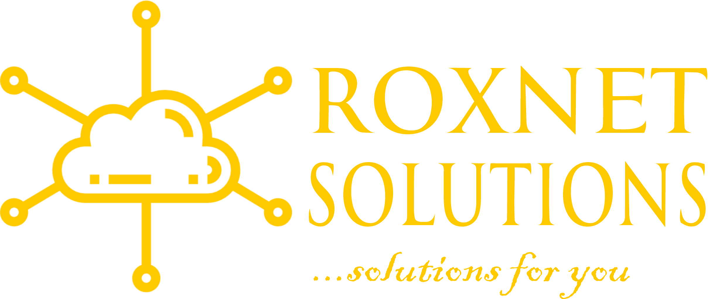 RoxNet Solutions: Best Virtual Assistance (VA) Agency in Nigeria